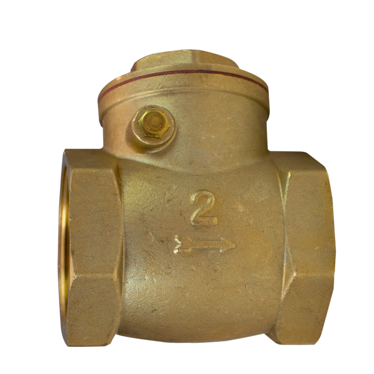 Swing Check Valve Brass 65mm (2.5 inch )